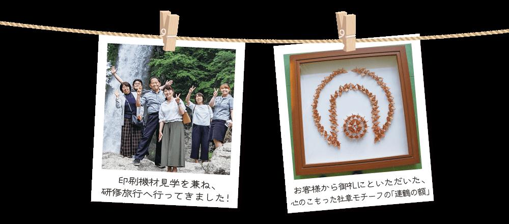 朝日印刷_pora